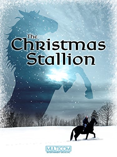 The Christmas Stallion
