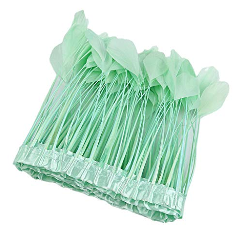 2m Feather Tassel Fringe Trim Embellishment for Xmas Party Costume Dressup | Color - Mint Green