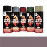 Mauve - 1200 Degree Wood Stove High Temp Paint -