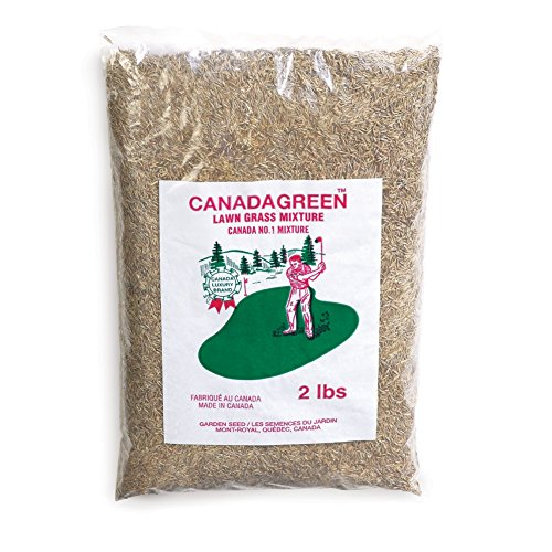 Canada Green Grass Seed - 2 Lb. Bag, Brown ()