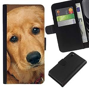 KLONGSHOP // Tirón de la caja Cartera de cuero con ranuras para tarjetas - Perro del labrador retriever de oro - Sony Xperia Z3 D6603 //