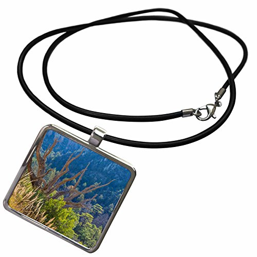3dRose Danita Delimont - Forests - Arizona, Chiricahua NM. Dead juniper tree frames mountain forest. - Necklace With Rectangle Pendant (ncl_229562_1)