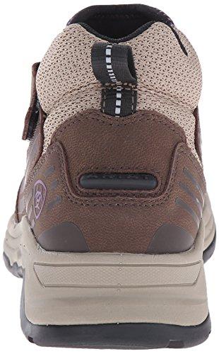 Women's Shoe Ul Maxtrak Hiking Brown Ariat Chocolate Zip aHqad