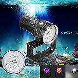 Fabal 10x XM-L2+4x R+4x B 12000LM LED Photography Video Scuba Diving Flashlight Torch (Black)
