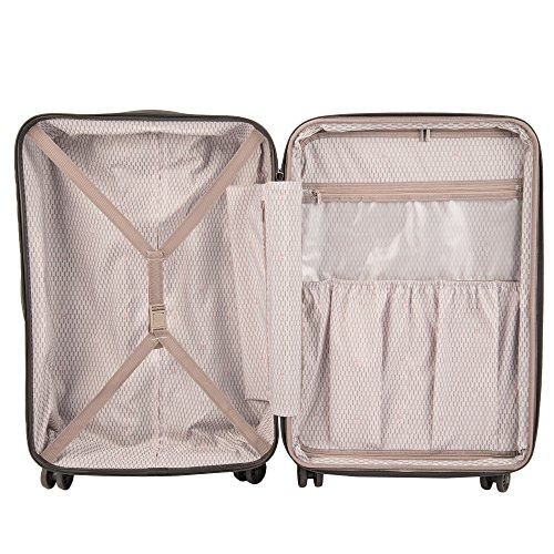 Delsey Luggage Panorama 3 Piece Expandable Spinner Trolley Luggage Set (Platinum)