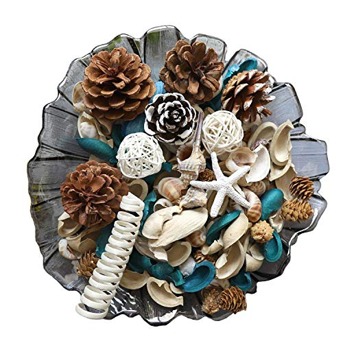 Qingbei Rina Blue White Potpourri thanksgiving gift, With Sea Shell, Conch, Starfish, Fresh Ocean Scent And Fragrance, Gift For Girl Women Mother And Your House, 18.3 OZ