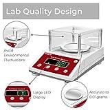 American Fristaden Lab Scale 1000g x 0.01g