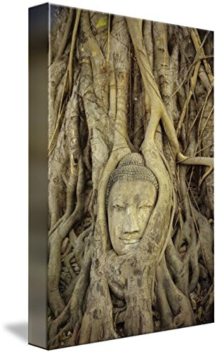 Wall Art Print entitled Thailand, Ayuthayai, Stone Buddha Head With Tree R by Design Pics | 21 x 32 by Imagekind