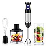 DIYOO Hand Blender Set, 4 in 1 Stainless Steel Hand Immersion...