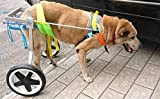 Adjustable Dog Wheelchair (L), Weight 44 to 110 lbs, Hip Height 20''-24'',Width:10.2''-15.8'' hind Legs Rehabilitation