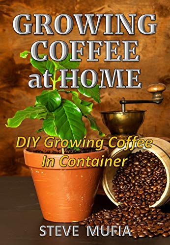 Growing coffee at home: DIY growing coffee in Container by [MUFIA, STEVE]