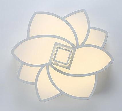 Amazon.com: Lámpara de techo LED personalidad moderna simple ...