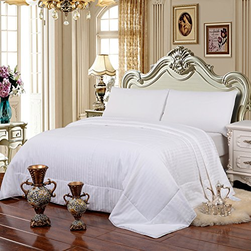 HollyHOME 100% Natural Long Strand Mulberry Silk Comforter with Cotton Covered, Twin Size 67 ...
