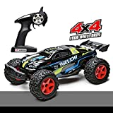 Demaxis Fast Rc Monster Truck Off Road 4x4, RTR 4wd All Terrain Radio Remote Control Car Outdoor, Electric Rc Offroad Desert Buggy Vehicles Highest Speed 45 km/h for Adults(1/12, Black)