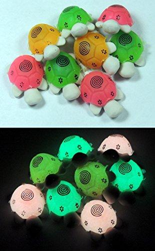 ool Pencil Erasers - TURTLES - Glowing Kids Eraser Set ()