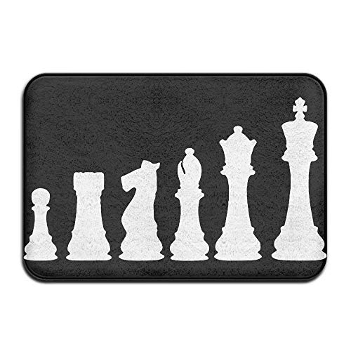 (YYERINX Chess Board Non-Slip Outside/Inside Floor Mat for Health and Wellness Offices Bathroom Doormat 23.6