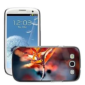 Super Stellar Slim PC Hard Case Cover Skin Armor Shell Protection // M00048934 twig autumn macro blur aero // Samsung Galaxy S3 i9300
