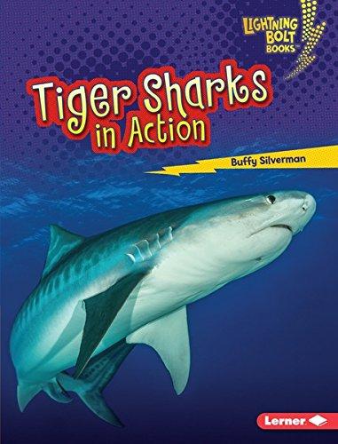 - Tiger Sharks in Action (Lightning Bolt Books ™ — Shark World)