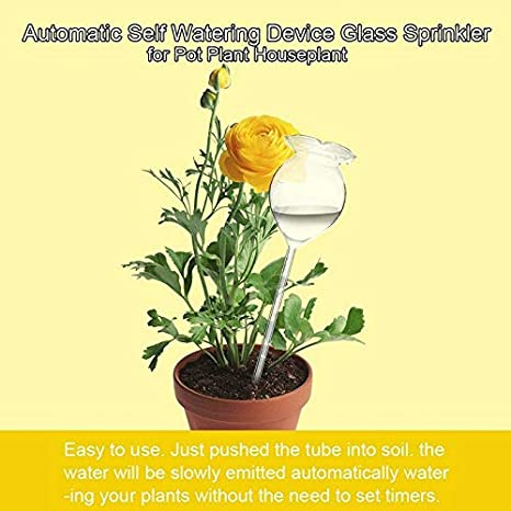 Usuny Self Watering Globe Plant Flower Water Bulbs Animal Bird Mushroom Star Snail Swan Butterfly Owl Rose Shape Mini Transparent Glass Home Decor Watering Tool