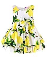 Rjxdlt Baby Girls Dresses Bowknot Lemon Flower Print Skirt Dress