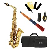 Conductor Model 300 Alto Saxophone – Gold Lacquer w Case, Accessories, Color Clip-On Tuner, 1 Year Warranty, Best Gadgets