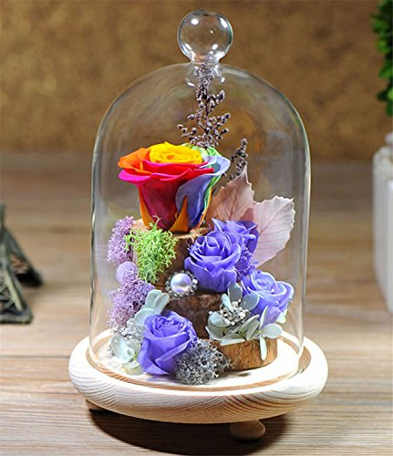 HPPFOTRS Handmade Preserved Rose Never Withered Roses Flower in Glass Dome, Gift for Valentine's Day Anniversary Birthday, with LED Flash Light (Gift …