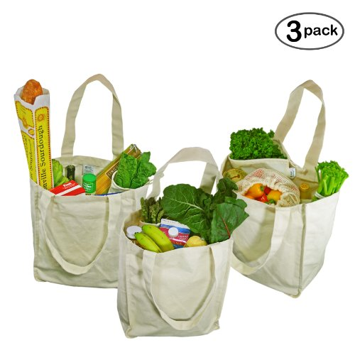 Simple Ecology Organic Cotton Deluxe Reusable Grocery Bag with Bottle Sleeves - Natural (3 Pack)
