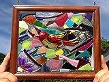 Bird Stained Glass Window Art Sun Catcher