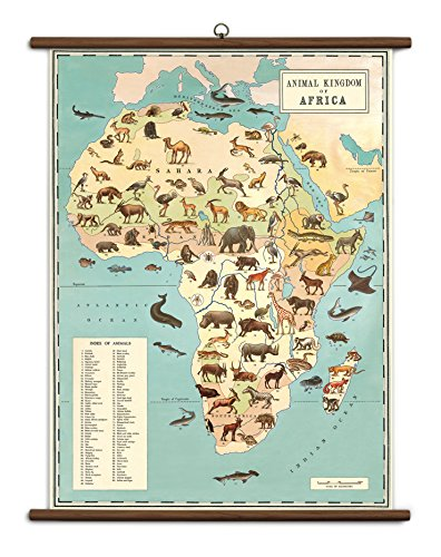Cavallini Papers & Co., Inc. VSC/ANI Animal Kingdom Cavallini Animal Kingdom Vintage School Chart