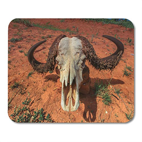 Emvency Mouse Pads Black Animal Water Buffalo Skull on Ground Maasai Mara Mouse Pad for notebooks, Desktop Computers mats 9.5