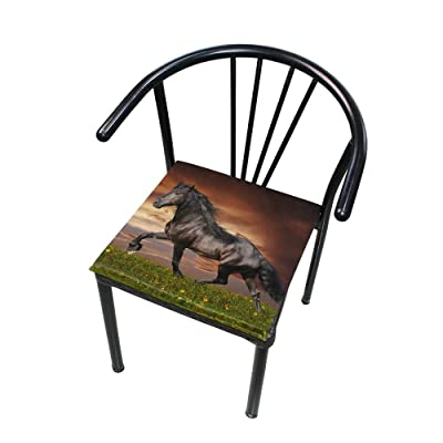 "Bardic HNTGHX Outdoor/Indoor Chair Cushion Animal Horse Sunset Square Memory Foam Seat Pads Cushion for Patio Dining, 16"" x 16"": Home & Kitchen"