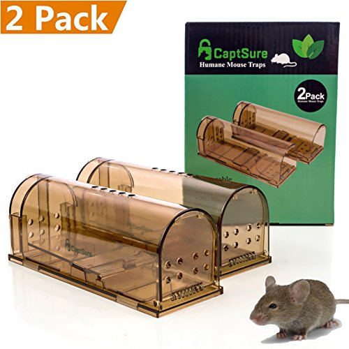 CaptSure Humane Mouse Trap, Live Catch and Release, No Kill, No Pain, Kids/Pet Safe, Easy To Set, For Indoor/Outdoor, Reusable Cage Box, For Small Rodent Rat/Mice Catcher That Works. 2 Pack