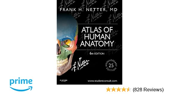 Atlas of human anatomy including student consult interactive atlas of human anatomy including student consult interactive ancillaries and guides 6e netter basic science 8601404282560 medicine health science fandeluxe Gallery