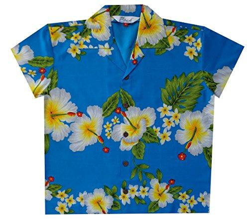 Alvish Boy Turquoise Shirt Alvish Boy Shirt Shirt Alvish Boy Alvish Turquoise Turquoise q5Xw6wt
