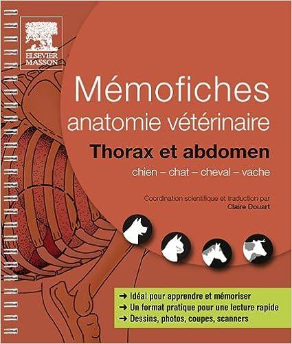 Amazon.com: Mémofiches anatomie vétérinaire - Thorax et abdomen ...