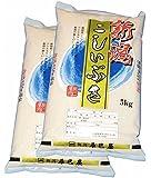 30年産 【精米】新潟県産(新潟辰巳屋産地直送米) 白米 こしいぶき10kg(5kg×2袋)