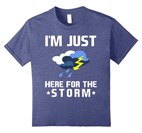 I'm Just Here for the Storm Thunderstorm Fan T-Shirt