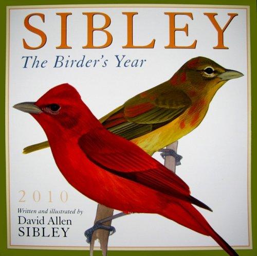 Sibley: The Birder's Year 2010 Wall Calendar (Calendar)