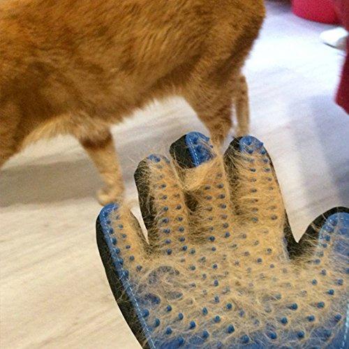 Pet Grooming Glove Massage Shedding Brush - Gentle Pet Hair Remover ...