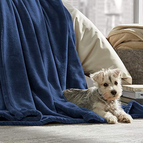 Bare Home Ultra Soft Microplush Velvet Blanket - Luxurious Fuzzy Fleece Fur  - All Season Premium 433d44f27
