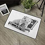 Meeting Room mat W16 x L24 INCH English Bulldog,Tie Wearing Puppy Sitting Inside a Briefcase Greyscale Illustration, Grey Pale Grey Non-Slip Door Mat Carpet