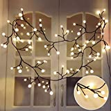 lovely backyard patio cover design ideas Globe Decorative String Lights,BaiYunPOY 8.3Ft 72 LED Hanging Indoor/Outdoor String Lights for Garden,Xmas Party,Bedroom,Dorm,Window Curtain Backyard,Party,Wedding(Warm White)