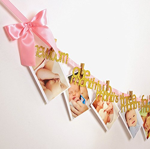 Newborn to 12 Months Photo Banner | Big Pink Bows Shimmering Gold Glitter Wordings Highest Quality First Birthday - A Make To Booth For How A Photo Party