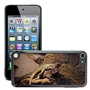 Hot Style Cell Phone PC Hard Case Cover // M00308773 Lizard Reptile Nature // Apple ipod Touch 5 5G 5th