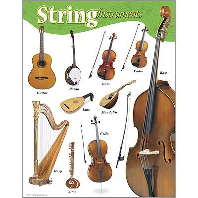 Music String Instruments Classroom Learning Poster