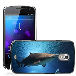 Etui Housse Coque de Protection Cover Rigide pour // M00109259 Tiburón Mar Océano Agua Animales // Samsung Galaxy Nexus GT-i9250 i9250