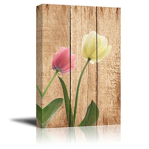 Pink and White Tulips Over Wood Panels Nature