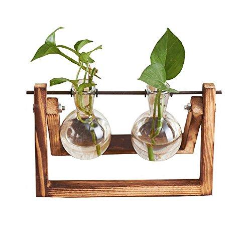 Gmakerr Vase with Wooden Stand Plant Pot Terrarium Container (2 Terrarium) … ()