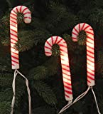 Set Of 10 Everglow Candy Cane Christmas Lights With White Wire