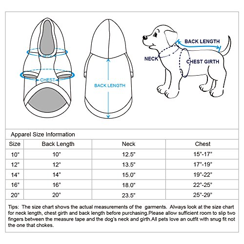"""Blueberry Pet 12"""" Back Length Clothes Dog Sweater for Girls in ..."""